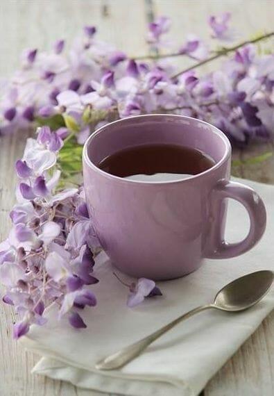 tea-dieta-dlya-lenivyh