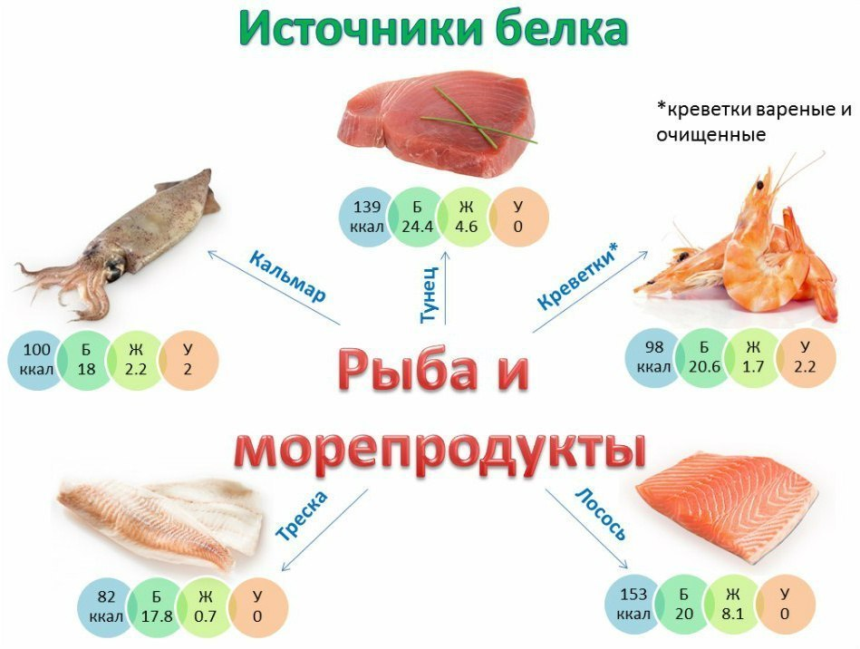 belkovye-dni-dieta