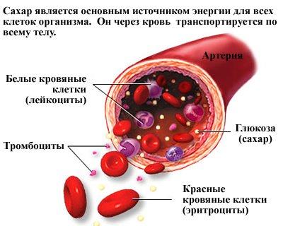 sahar-glyukoza